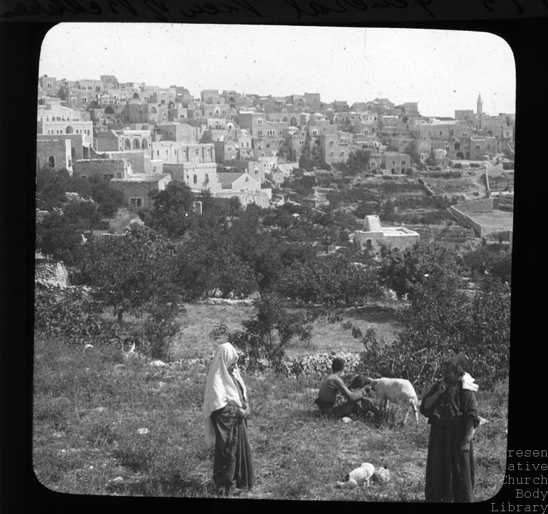 'General view of Bethlehem' [with locals in the foreground attending their goats in olive field]